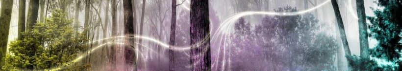 cropped-pinsdaddy-enchanted-forest-backgrounds-wallpaper-cave-11.jpg